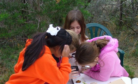 A magnifying glass comes in handy when studying bugs. (Courtesy of Paula Richards)