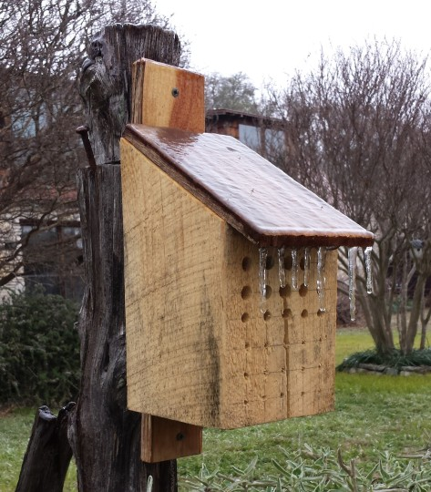 Bee box in winter. (Courtesy of Billy Huston)
