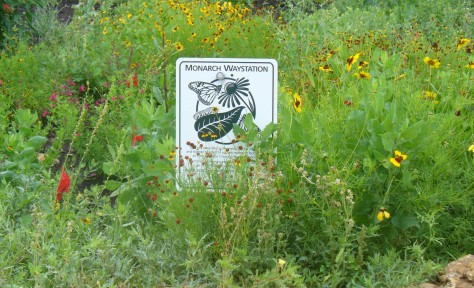 Our sign surrounded by lots of flowering plants. (Courtesy of Paula Richards)
